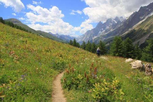 Beautiful landscape on the Tour du Mont Blanc trail