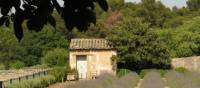 The garden Van Gogh looked out on from the psychiatric home near St Remy de Provence | Rob Allsop