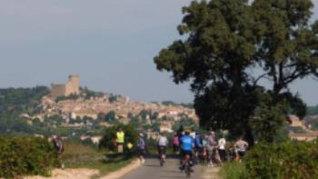 Cyclists in Provence