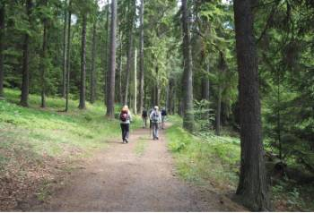Hiking through Häringe-Hammersta nature reserve&#160;-&#160;<i>Photo:&#160;Kathy Kostos</i>
