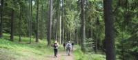 Hiking through Häringe-Hammersta nature reserve   Kathy Kostos