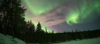Swirling northern lights in Swedish Lapland   Ross Baker