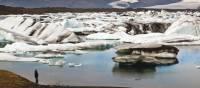 Man viewing icebergs carved from Breidamerkurjokull in Jokulsarlon glacial lagoon.   Richard I'Anson