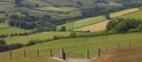 Views from Hawthorn Hill | John Millen