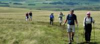 On the moors near Orton Scar, England