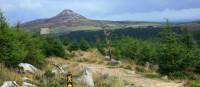 Trail  and waymarking on Wicklow way | John Millen