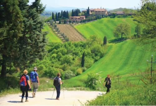 On the way to Montalcino&#160;-&#160;<i>Photo:&#160;John Millen</i>
