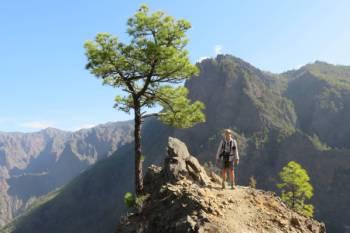 View point near Pico Bejenado&#160;-&#160;<i>Photo:&#160;John Millen</i>